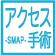 アクセス手術SWAP